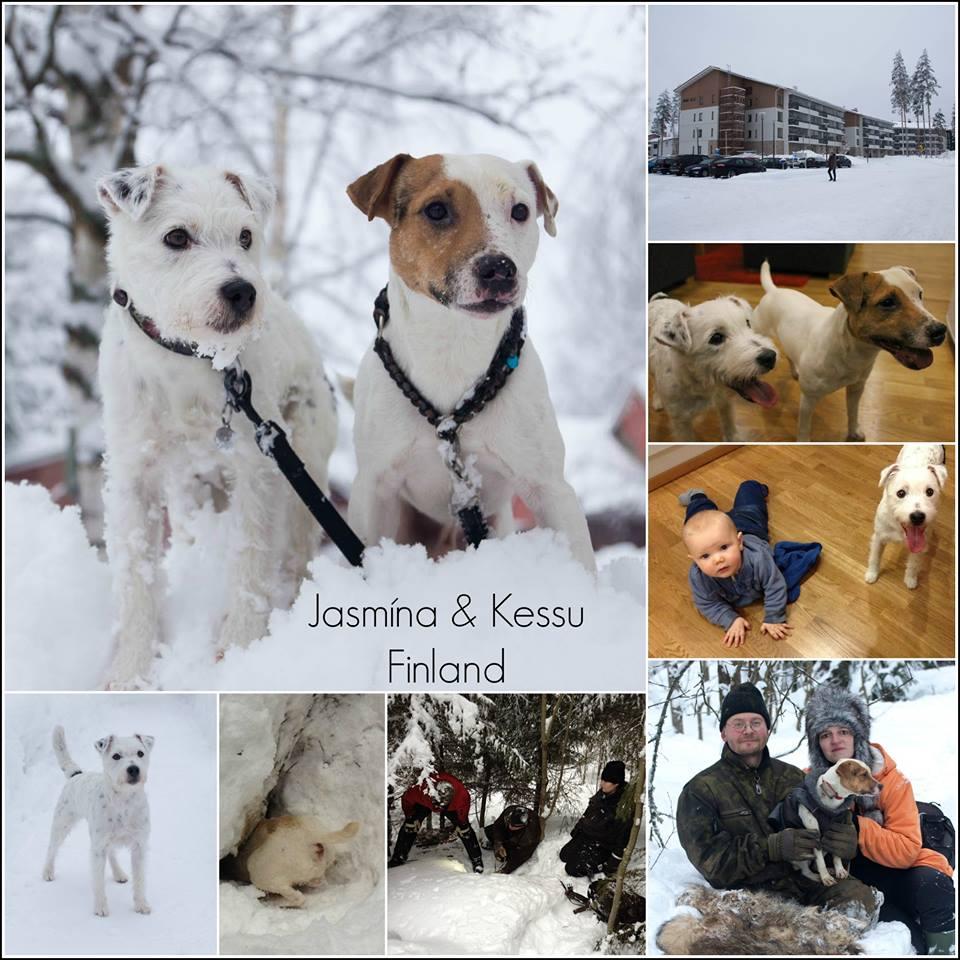 Finsko_kolaz